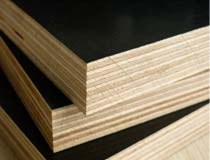 Film faced plywood -----ZNSJ joined into foreign project with foreign trade company